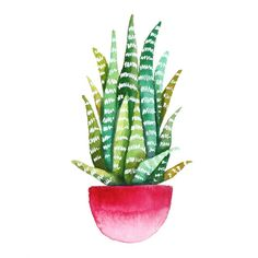 This is a giclee print of an original watercolor of a cactus/succulent. It is the most low-maintenance way to bring a plant into your home -