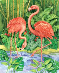 Bamboo Flamingo Print By Paul Brent