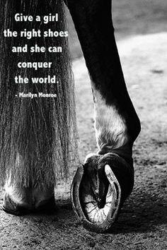horse shoes ❤