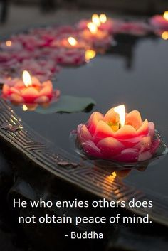 """He who envies others does not obtain peace of mind""           ~Buddha~"