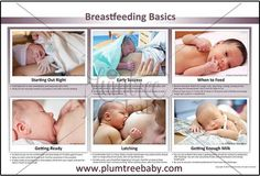 Breastfeeding Basics poster/chart shows an overview for how to get started breastfeeding.