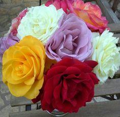 Rózsák.
