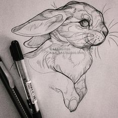 Exciting Learn To Draw Animals Ideas. Exquisite Learn To Draw Animals Ideas. Pencil Art Drawings, Art Drawings Sketches, Cute Drawings, Animal Sketches, Animal Drawings, Arte Sketchbook, Desenho Tattoo, Animal Tattoos, Art Inspo