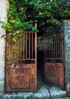 Chic Old Architectural Gates