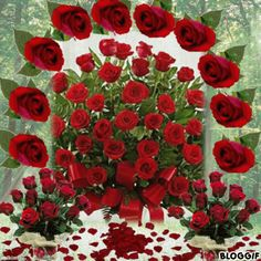 1 million+ Stunning Free Images to Use Anywhere Beautiful Landscape Wallpaper, Beautiful Flowers Wallpapers, Beautiful Rose Flowers, Love Rose, Love You Gif, Love You Images, Free To Use Images, Beautiful Love Pictures, Beautiful Gif