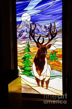 1000 Images About Stained Glass Deer On Pinterest