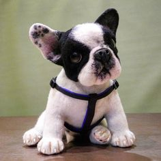 Diy Crafts - Have you ever stunned when you saw those cute, realistic creations which are made of wool or pinned a lot of needle felted crafts in your Needle Felted Animals, Felt Animals, Needle Felting, Baby Animals, Cute Animals, Wonder Zoo, Felt Dogs, Animal Projects, Wool Felt