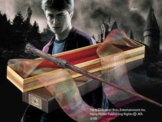 Harry Potter's Wand with Ollivanders Box --- I can think of several HP geeks who would love this