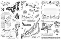 Nature's Sketchbook Hampton Art Cling Stamps