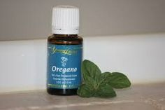 Oregano oil! I also take this in pill form everyday for Acne and to ward off sickness. I live by Oregano Oil!