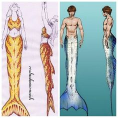 Mako Mermaids - Mertail designs