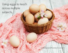 Use eggs to teach across multiple subjects; easily ties in with Easter Egg coloring!
