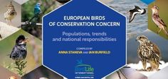 BirdLife unveils its latest publication, 'European Birds of Conservation Concern', in Parma Italy. Conservation, Birds, Hot, Bird, Canning