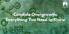 A comprehensive guide to everything you need to know about candida overgrowth. How to get rid of it, symptoms, spit tests: it's all in here.
