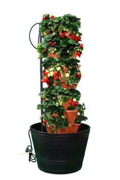 Mr. Stacky Stacking Hydroponic Pots Tower - The Vertical Container Hydroponics Growing System to Grow Vegatables, Herbs, Strawberries, Peppers, and Much More - Indoors or Outdoors - Terra Cotta Plastic Stackable Planters - Also Used in Aquaponic Systems - Comes with Easy to Use Gardening Instructions
