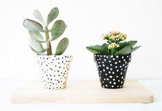 petit pois : small polka dots pots / bonjour supermarket #diy