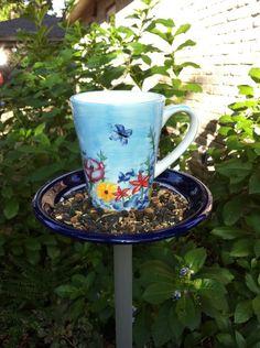 bebedero para pájaros y platón con comida