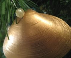 gold painted seashell ornament