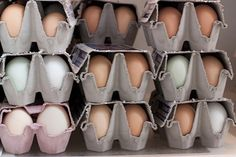 Healthy Hard-Boiled Egg Recipes