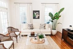 Living space with a white sofa, vintage chairs, and a large indoor plant