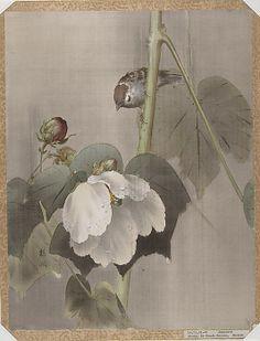 Flowers and Birds by OKADA Baison, Meiji period (1868-1912), Japan