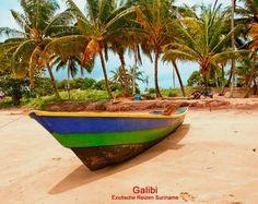 Strand te Galibi