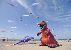 A pair of inflatable dinosaurs are tethered to the beach at Presque Isle State Park during the annual 'Discover Presque Isle' weekend-long event near Erie, Pennsylvania, on July 28, 2012.
