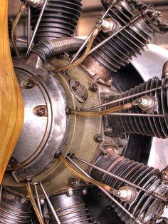 Star engine of Elly Beinhorn