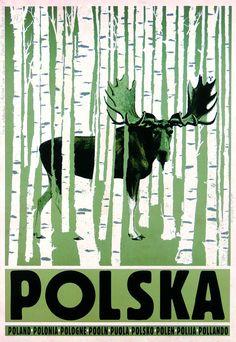 Ryszard Kaja: Polska. Z serii: Polska, 2012