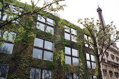 » Прекрасные сады на крышах домов Это интересно!