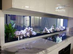 10 Tips on Designing a Freshwater Nature Aquarium Cool Fish Tanks, Saltwater Fish Tanks, Saltwater Aquarium, Aquarium Fish Tank, Freshwater Aquarium, Aquarium Terrarium, Home Aquarium, Aquarium Design, Aquarium Ideas