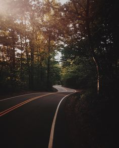 Road, forest, tree and dim light HD photo by Jesse Bowser ( on Unsplash Android Wallpaper Forest, Time Lapse Photography, Nature Photography, Travel Photography, Long Way Home, Forest Road, Landscape Photographers, Natural World, Free Pictures