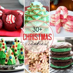 30+ Christmas Cookies - 365 Days of Baking & More