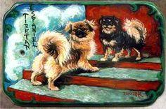 Tibetan Spaniels Hand Painted Porcelain Plaque