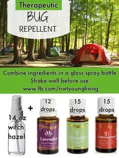 Therapeutic Natural Bug Repellant with Young Living Essential Oils Lavender, Citronella and Lemongrass spray on tent Yl Oils, Natural Essential Oils, Essential Oil Blends, Natural Oils, Essential Ouls, Essential Oil Bug Spray, Citronella Essential Oil, Doterra Oils, Natural Products