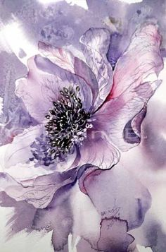 Anemone / Aquarell 22x15cm Watercolour painting. I love the colour in this.