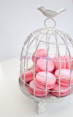 Macarons. @Mallory Ficken they have bird cages JUST like this at Michaels right now for 40% off...just sayin'