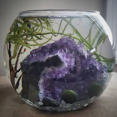 I'm so excited for this reveal ! I've been testing and working on this project for a few weeks now....may I present the Crystal Water Garden, featuring Marimo!! www.thecrystaljypsy.com  #crystal #crystals #aquarium #amethyst #water #waterwitch