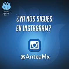 ¿Ya nos sigues en #Instagram? No olvides compartirnos tus mejores momentos con nosotros usando #Antea o #AnteaQro <3
