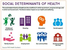 An infographic using 8 icons to represent each of the social determinants of health listed in the text below.