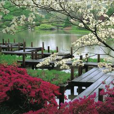 Botanical Gardens, St Louis, MO