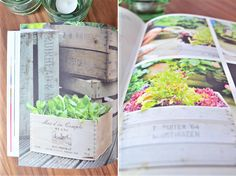 A New Book & My Urban Garden · Happy Interior Blog