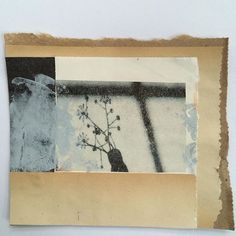 #collage #photo transfer #paint