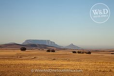 Durbanville #capetown #southafrica #tablemountain Table Mountain, Cape Town, Monument Valley, South Africa, Explore, Mountains, Heart, Nature, Travel