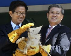 Pour 73000euros, un professeur sud-coréen ressuscite votre chien disparu - Le nouvel Observateur