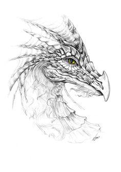 excellent pencil drawings of dragon Dragon Coloring Page, Coloring Pages, Adult Coloring, Coloring Books, Fantasy Dragon, Fantasy Art, Realistic Dragon Drawing, Dragon Eye Drawing, Pencil Drawings