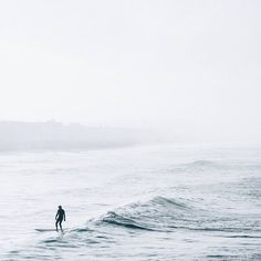 Wave rider // via @kateholstein