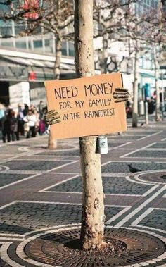 need money for my family in the rainforest. getting the message out there for a serious cause by using humour that works Save Our Earth, Save The Planet, Guerilla Marketing, Street Marketing, Experiential Marketing, Marketing Tools, Need Money, Raise Money, Faith In Humanity