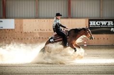 Ride in 2016, reining