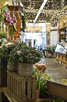 Alegre market: It is the cheapest market in Paris and one of the most popular among locals